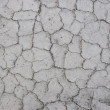 The cracked surface — Stock Photo