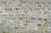 Wall from the block — Stock Photo