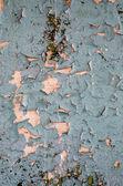A parede pintada — Fotografia Stock