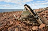 The old, broken boat — Stock Photo