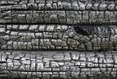 Powierzchni drewna — Zdjęcie stockowe