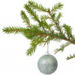 Cristmas-tree ball — Stockfoto