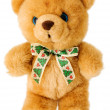 Brown bear teddy — 图库照片