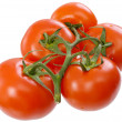Red tomato — Stock Photo #1797106