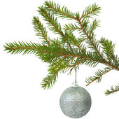 Cristmas-tree ball — Stock Photo