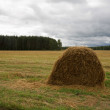 Haystack — Stock Photo #1800633