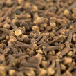 Cloves — Stock Photo