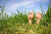 Bare feet in a grass — Stock Photo