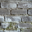Old brick grey wall with a mould texture — Stock Photo #2302980