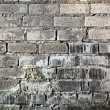 Brick old grunge mouldy wall background — Stock Photo