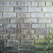Background with mustiness old grunge brick wall — Stock Photo #2306682