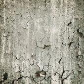 Textura repugnante de la pared pelada — Foto de Stock
