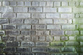 Background with mustiness old grunge brick wall — Stockfoto