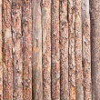 Rural primitive fence from pine logs — Stock Photo