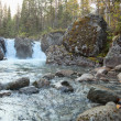 Falls on a stream in northern wood — Stock Photo