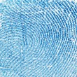 Fingerprint background — Stock Photo #2313595