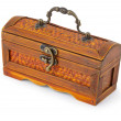 Old box - trunk on white background — Foto Stock