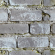 Seamless background - moldy brick wall — Stock Photo