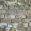 Seamless texture dirty moldy brick wall — Foto Stock
