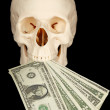 Royalty-Free Stock Photo: Skull with bundle of money in mouth