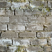 Seamless texture dirty moldy brick wall — Stock Photo