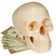 Stock Photo: Skull lying on a pack of money isolated