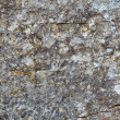 Royalty-Free Stock Photo: Background - gray rock with lichen