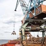Industrial grabber the crane — Stock Photo