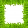 The frame of green grass — Stock Photo #1082589