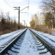 Stock Photo: Rails of railway in winter