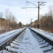 Royalty-Free Stock Photo: Rails of the railway in the winter