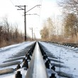 Stock Photo: Rails of the railway in the winter