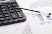 Finansiella rapporter. — Stockfoto