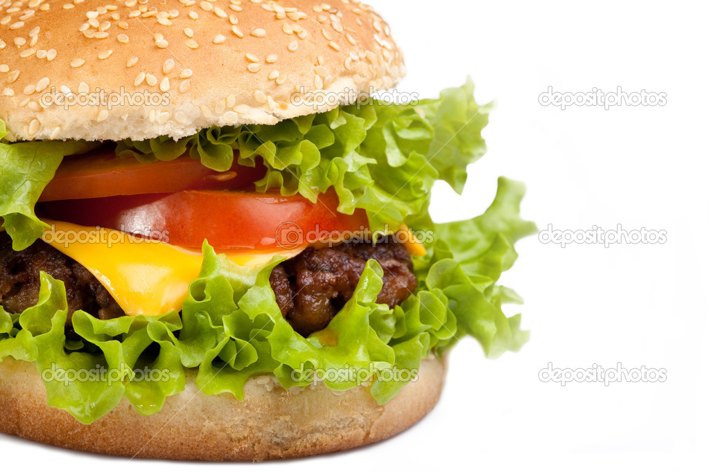 Tasty hamburger isolated on white background  Stock Photo #2050471