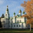 Samsonovskja church — Stock Photo #1013346