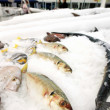 Fish market — Stock Photo