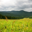 Altai — Stock Photo #1018000