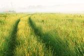 牧草地を通って道 — ストック写真