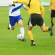 Soccer match — Stock Photo #1024807