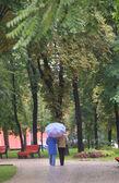 走在秋天的公园 — 图库照片