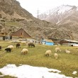 Village in Caucasus mountain — Stock Photo