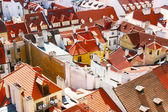 Prague roofs — Stock Photo