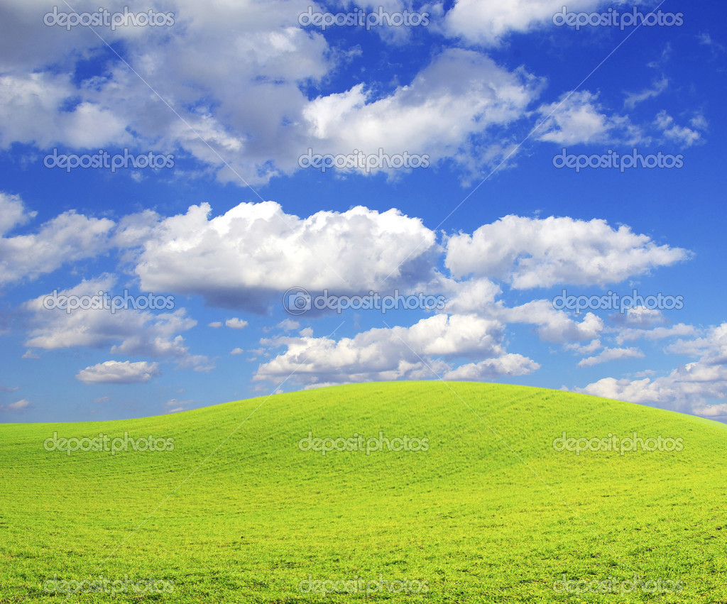 Field on a background of the blue sky — Stock Photo #1014130