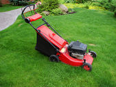 Gasoline powered lawn mower standing in extremely long grass. — Stock Photo