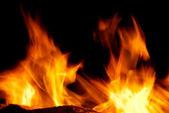 Nice fire — Stock Photo