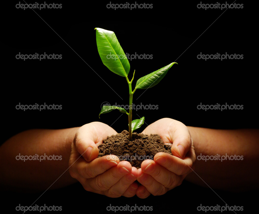 Hands holding sapling in soil on black — Photo #2043822