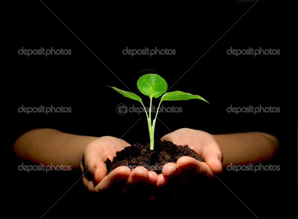 Hands holdings a little green plant on a black background — Stock Photo #2044234