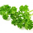 Parsley — Stock Photo #2072321