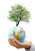 在手中的地球 — 图库照片
