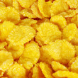 Corn flakes — Stock Photo #2405642